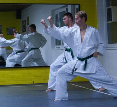 Fortgeschnittene Jiu Jitsu Schüler
