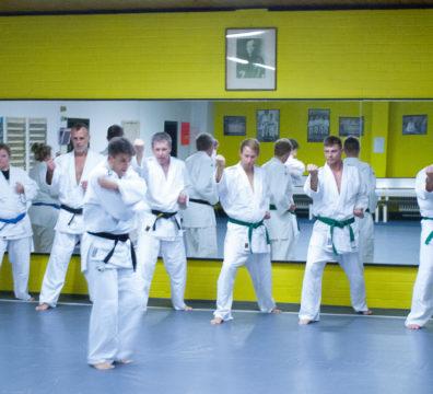 Training in der Judoschule